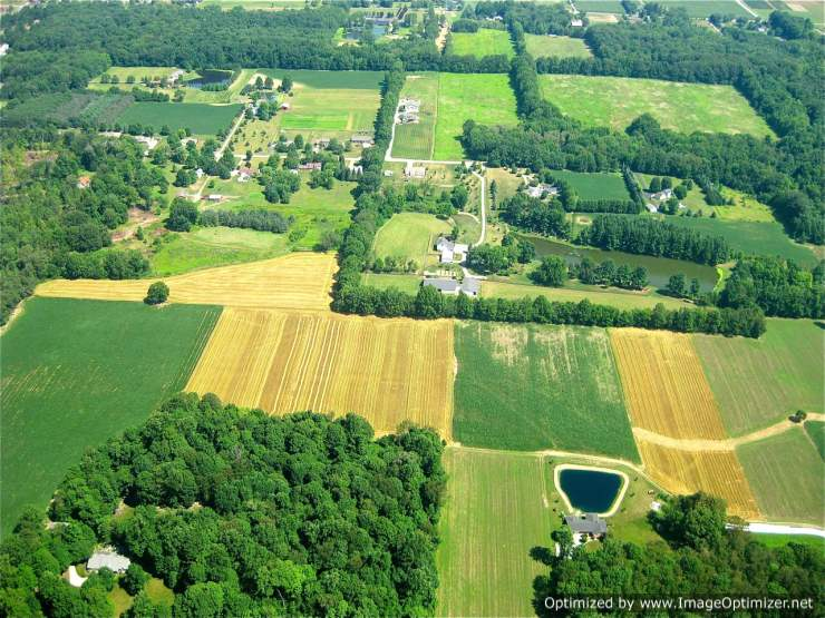 1 Acre Agricultural Plot for sale
